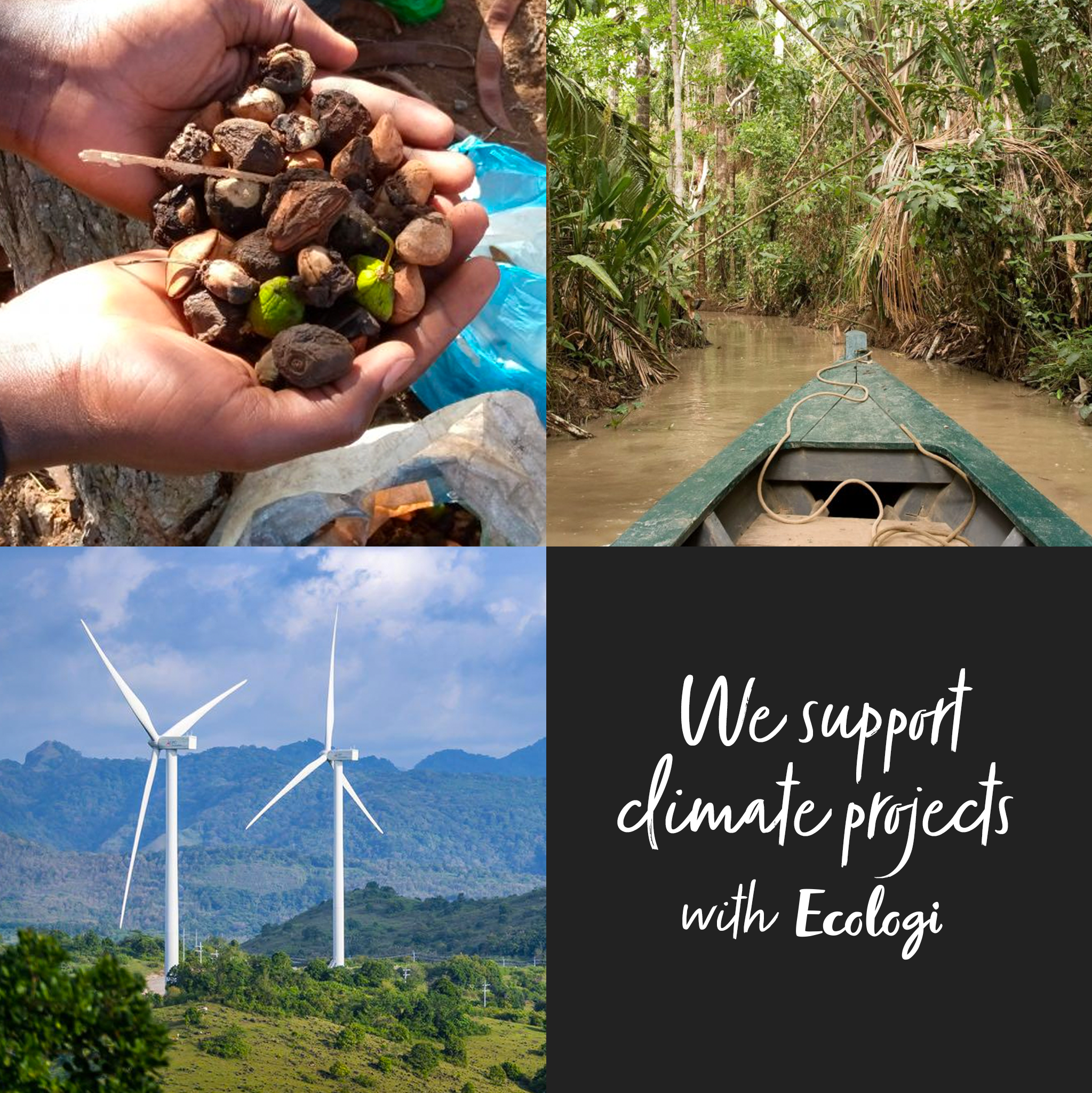 Supporting_Climate_Projects_with_Ecologi
